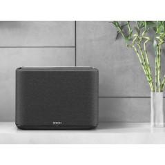 Multiroom Speaker HOME 250